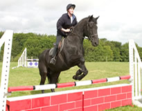 A picture of a horse and rider jumping a red gate on the jumping corse at Low Farm Riding Centre